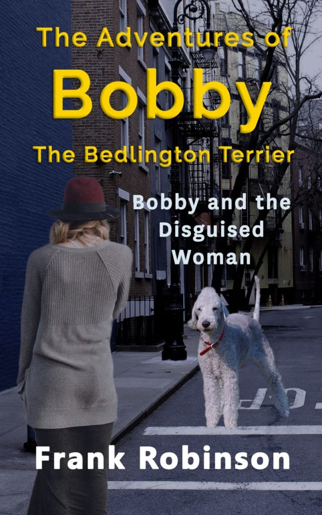 Bobby And The Disguised Woman - Cover
