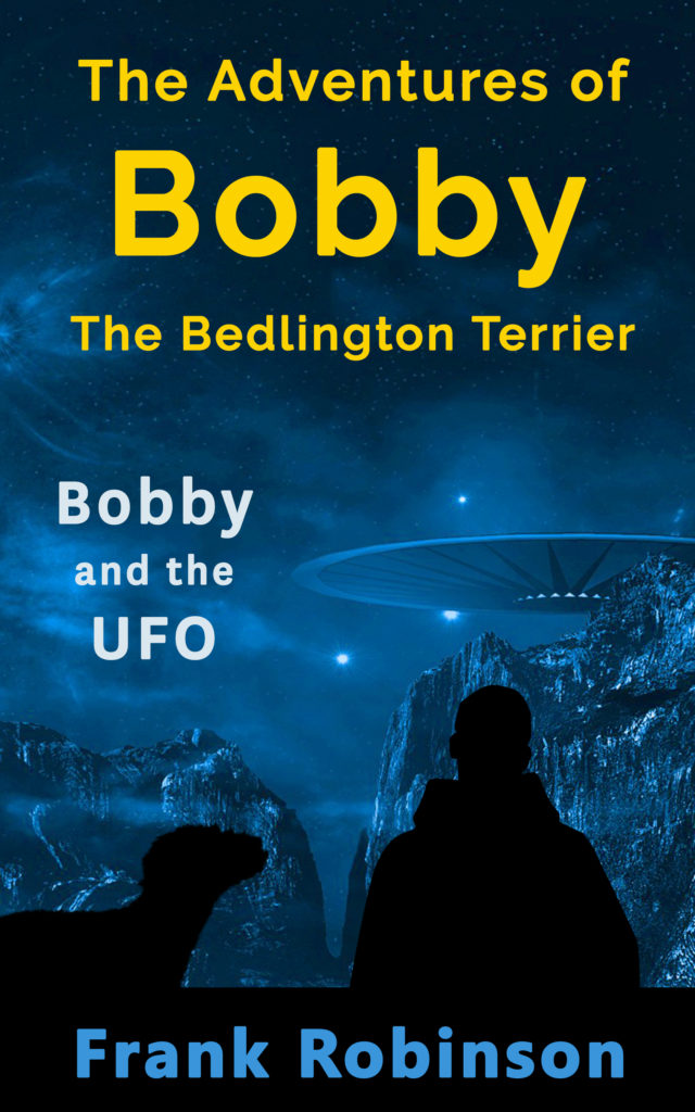 Bobby And The UFO - Cover